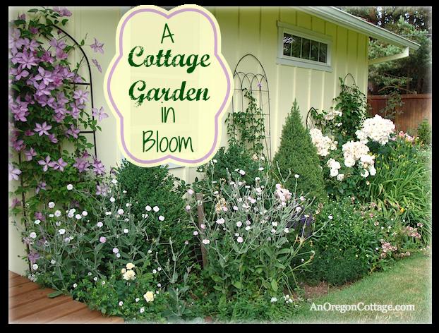 Cottage Garden in Bloom