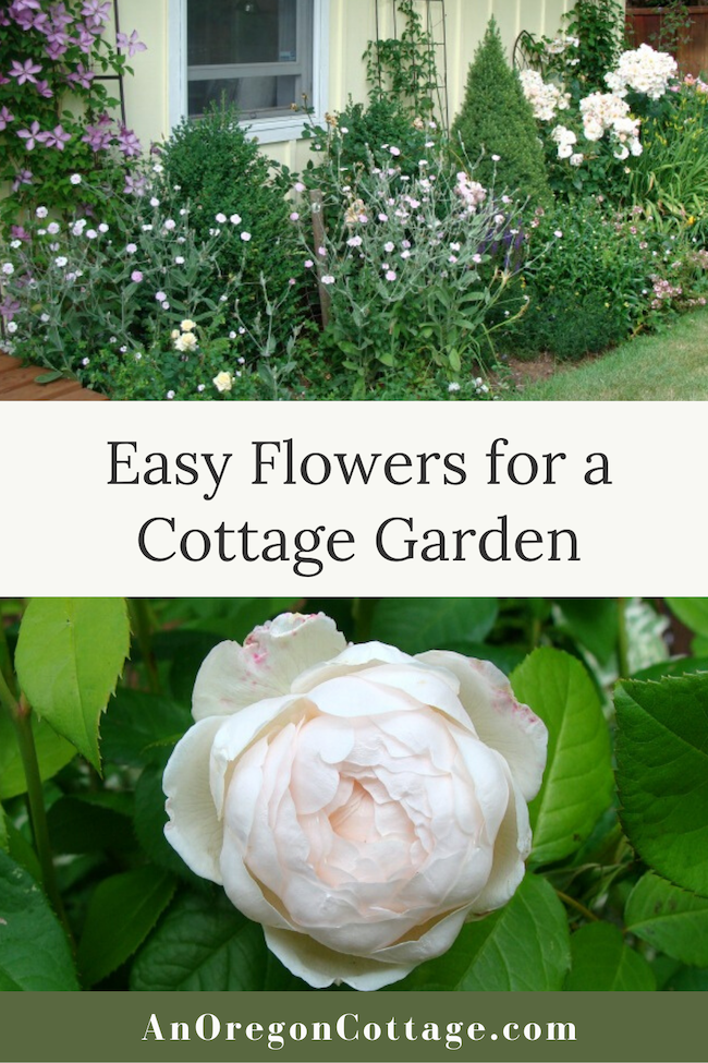 easy flowers for a cottage garden
