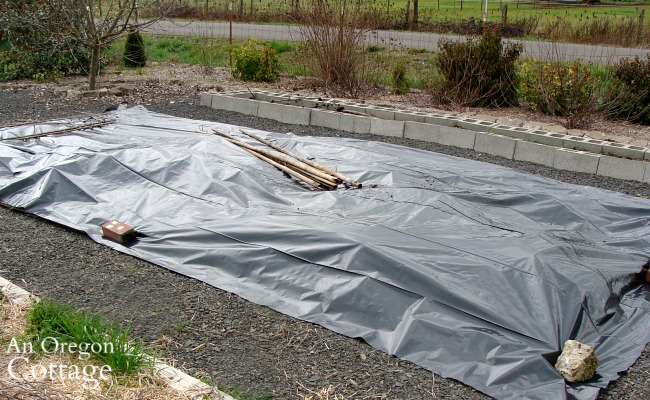 plastic covered vegetable bed_