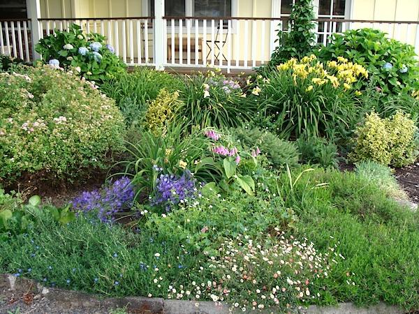 Front cottage garden