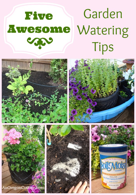 Five awesome ways to save water and time in your garden - Ways saving water watering garden ...
