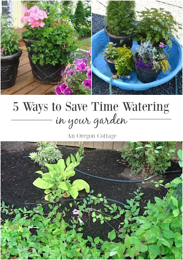 Five ways to save water and time in your garden - Ways saving water watering garden ...