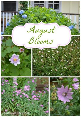 August Blooms