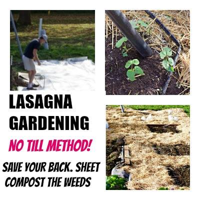 Lasagna gardening via Homemade Food Junkie