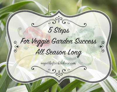 Tips for season-long vegetable success via The Freckled Rose