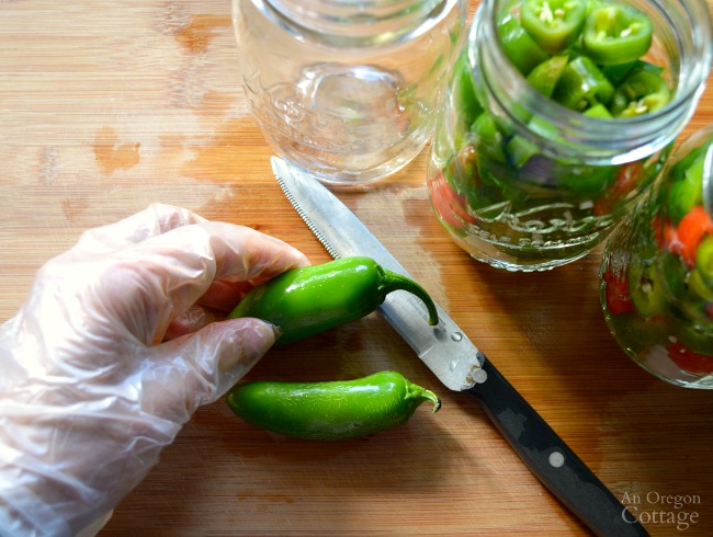 Quick Pickled Jalapeños-Using gloves to slice fresh jalapenos