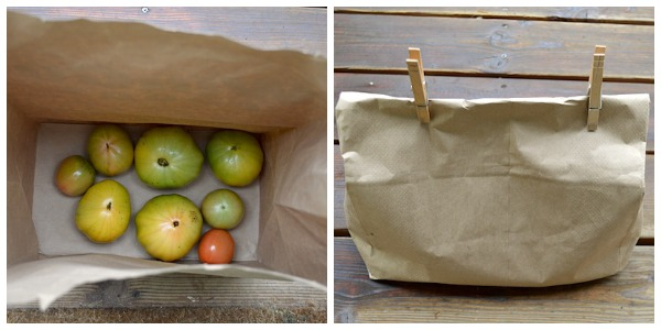 Tomatoes Ripening in Paper Bag :: An Oregon Cottage