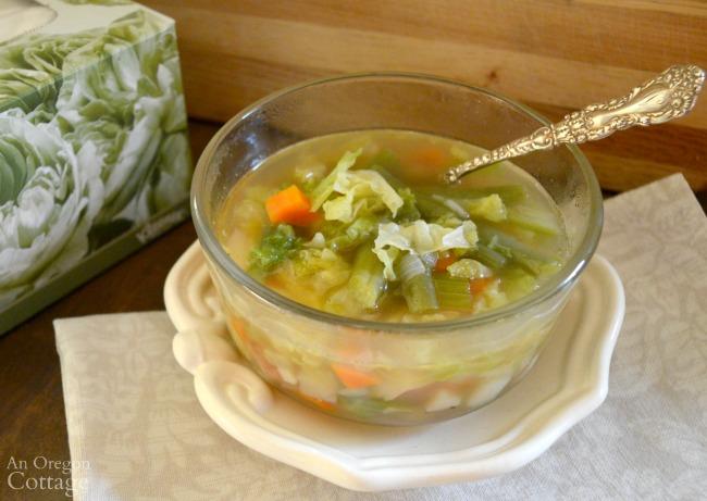 Bone Broth Chicken Vegetable Soup