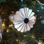 Fanned-bk-pg.-ornament350