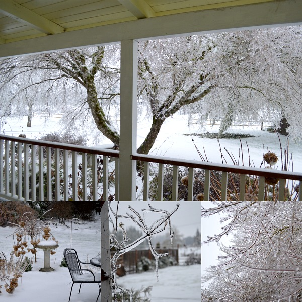 Ice Storm 2014 - An Oregon Cottage