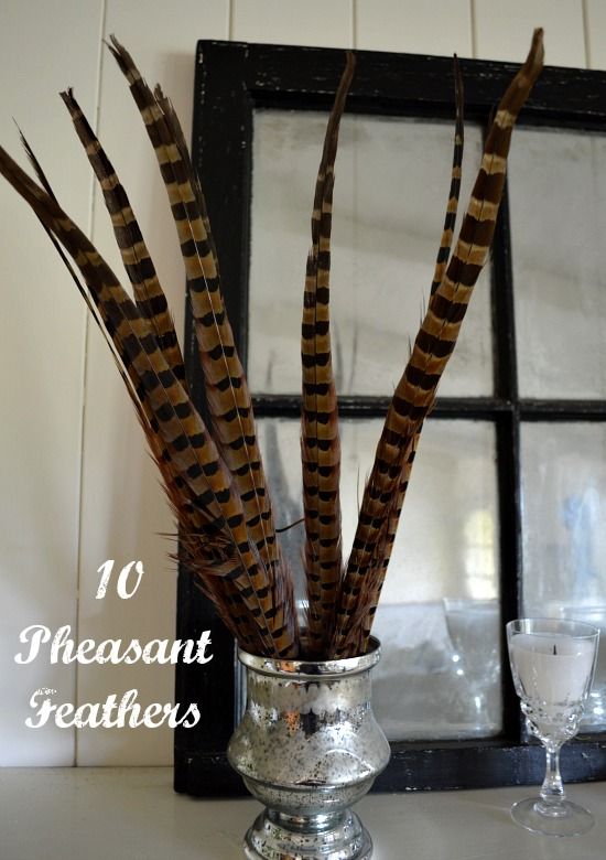Pheasant Feathers - An Oregon Cottage