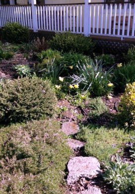 3-14 Right Front Garden Clean Up