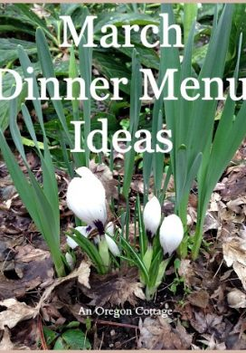 March Dinner Menu Ideas