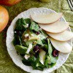 Apple Cider Vinagrette Dressing on spinach salad