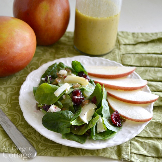 Apple Cider Vinaigrette Dressing on salad