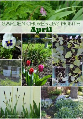April Garden Chores - An Oregon Cottage