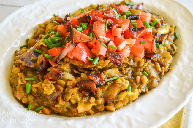 curried lentils close in bowl