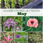 Garden Chores by Month: May - An Oregon Cottage