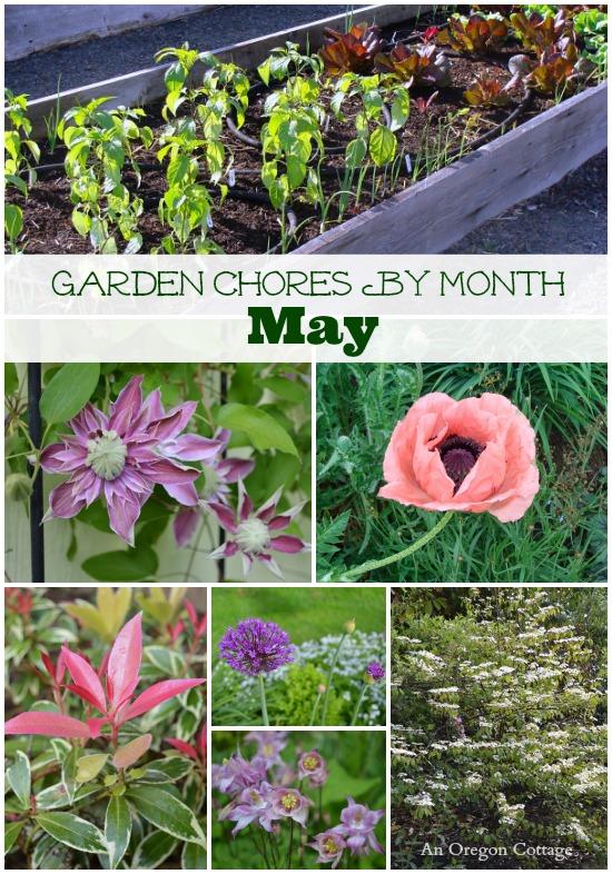 May Garden Tasks