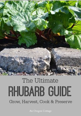 The Ultimate Rhubarb Guide: Grow, Harvest, Cook & Preserve