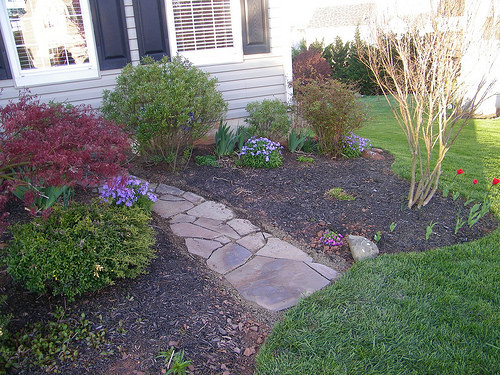 Stone path via teacups in the garden