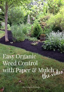 Easy Organic Weed Control with Paper and Mulch-The Video from An Oregon Cottage