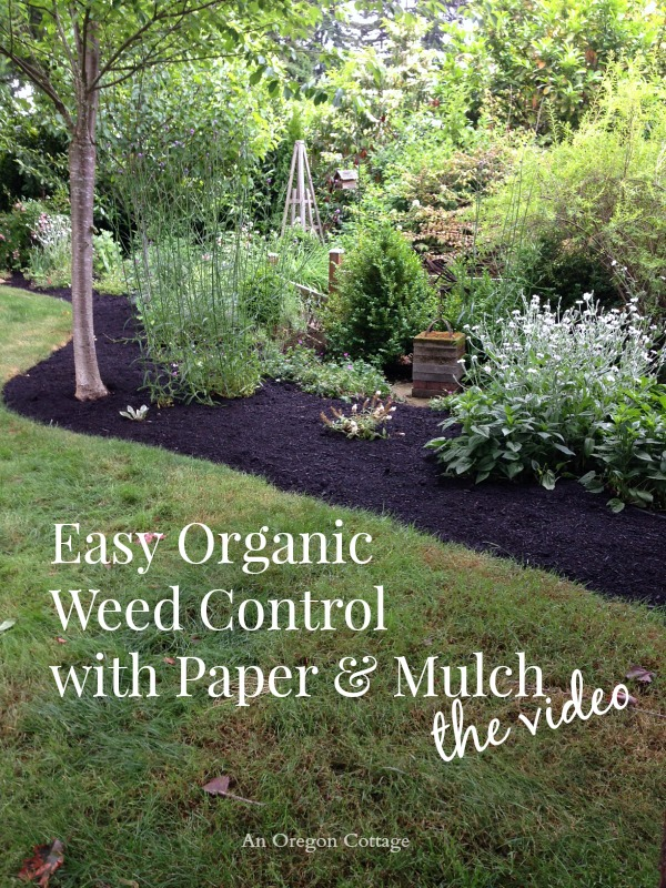 Easy Organic Weed Control with Paper and Mulch