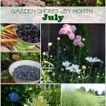 Garden Chores For the Month of July - An Oregon Cottage