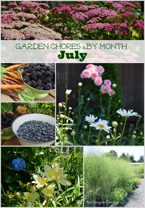 Simple monthly checklist of garden chores for July including tasks for the fruit and vegetable garden, flower garden, and basic lawn and yard care.