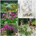 Tuesday Garden Party Features 8.19 via An Oregon Cottage