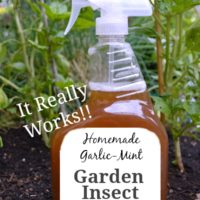 DIY Natural Garden Insect Spray