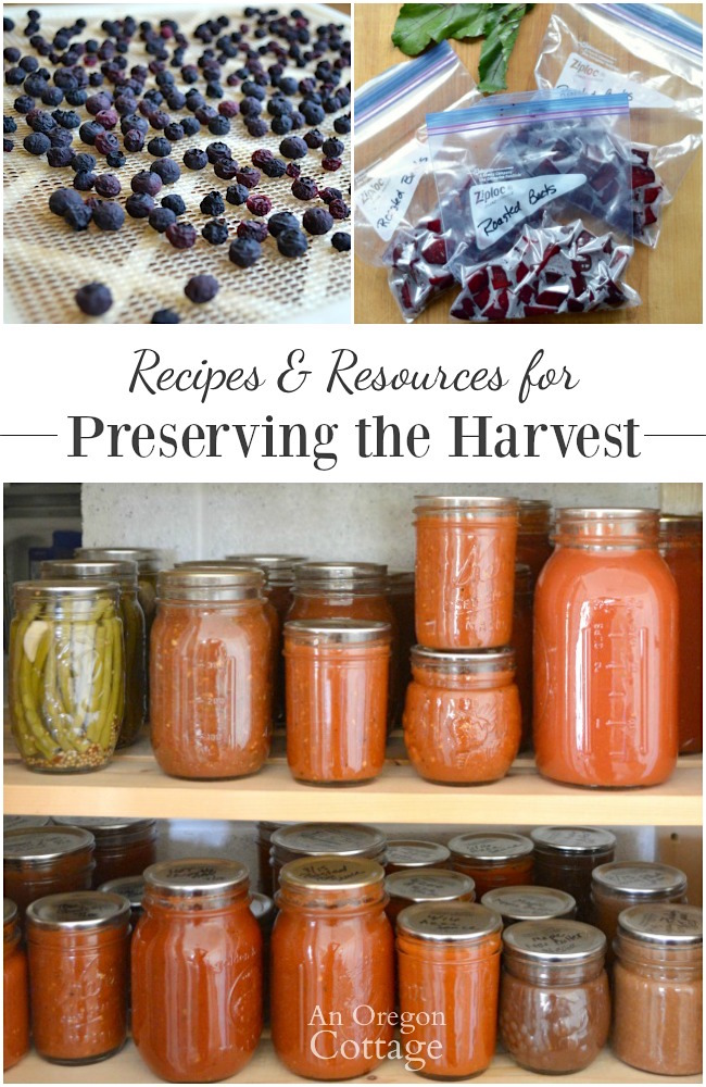 Recipes and resources for preserving the harvest. Freezing food, drying food, canning food.
