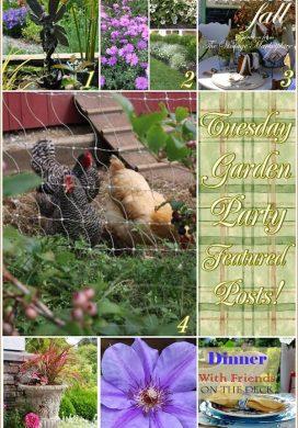 Tuesday Garden Party 9.16.14