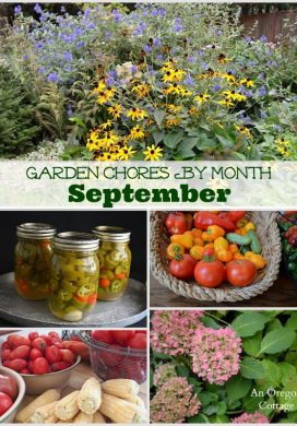 September Garden Chores - An Oregon Cottage