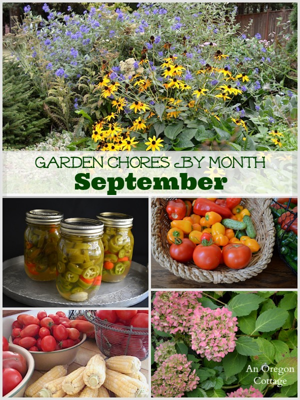 A simple monthly checklist of garden chores for September including tasks for the fruit and vegetable garden, flower garden, and basic lawn and yard care.