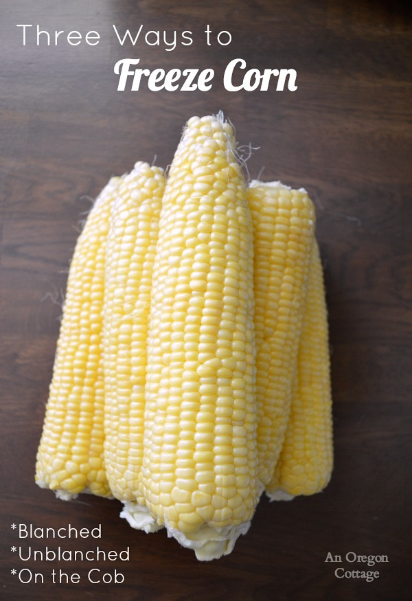 Three Ways to Freeze Corn-ears of corn