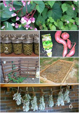 Tuesday Garden Party 9.30.14