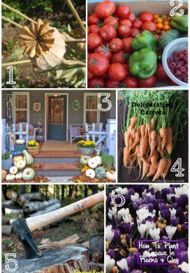 Tuesday Garden Party 10.07.14