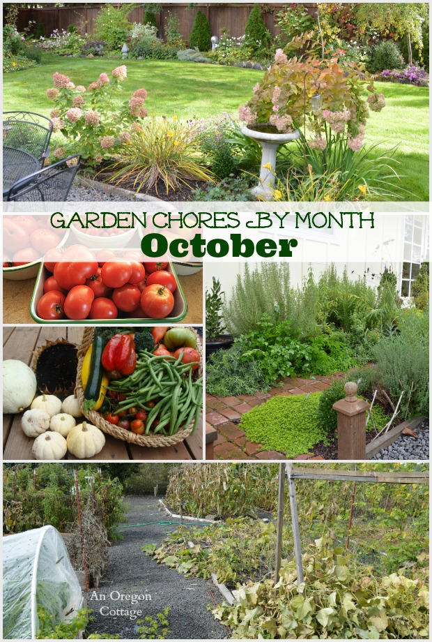 An easy monthly checklist of garden chores for October including tasks for the fruit and vegetable garden, flower garden, and basic lawn and yard care.