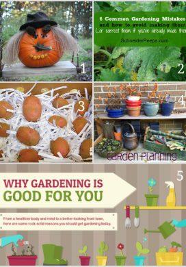 Season Ending Tuesday Garden Party 10.28.14