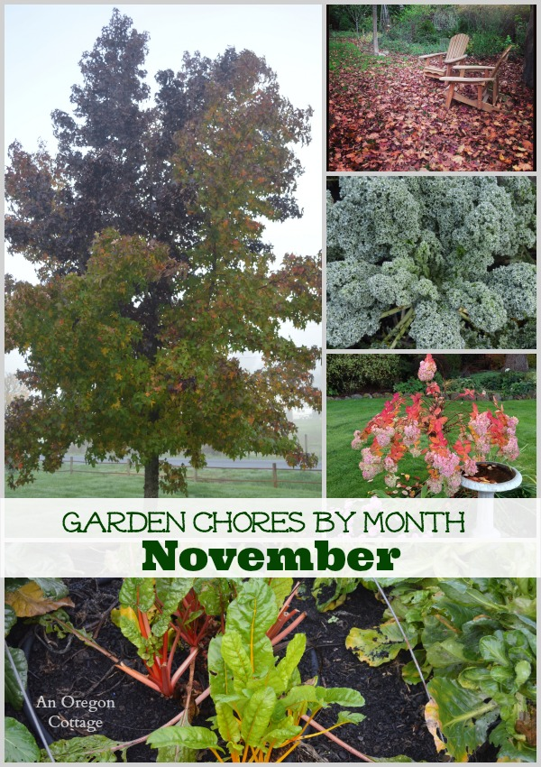 November garden chores collage