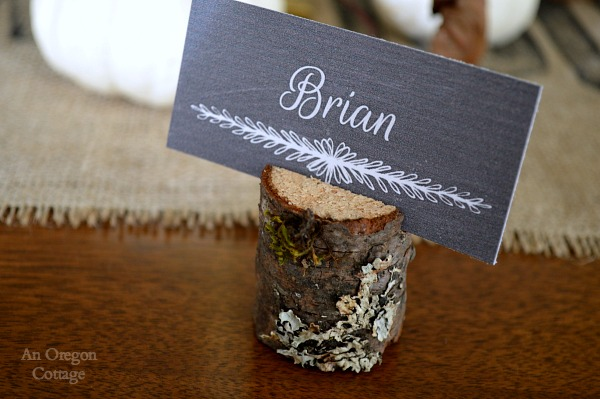 Lichen Covered Wood Place Card Holder