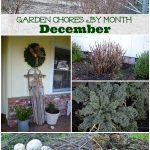 A list of things to do in the garden for December