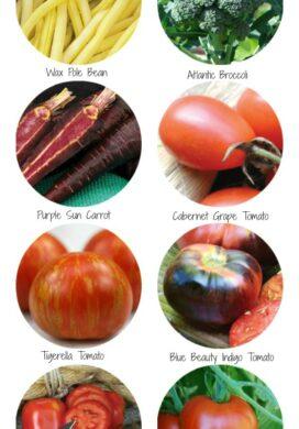 8 Vegetable Varieties to Try