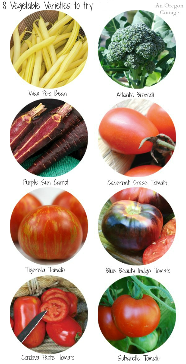 8 Vegetable Varieties to Try