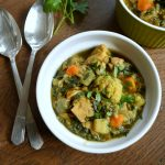 Chicken, Vegetable and Lentil Curry made in a Slow Cooker