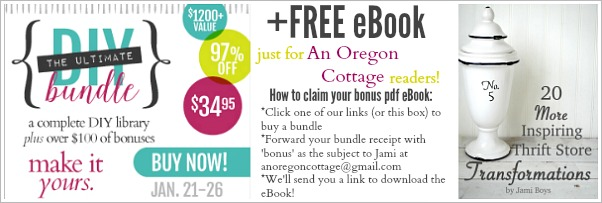 Free AOC eBook With DIY Bundle Purchase