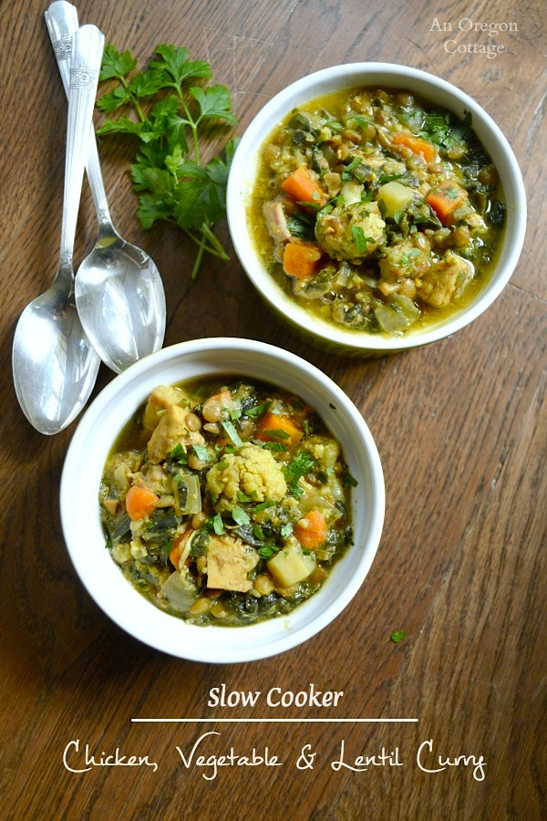 Quick and Easy Slow Cooker Chicken, Vegetable and Lentil Curry