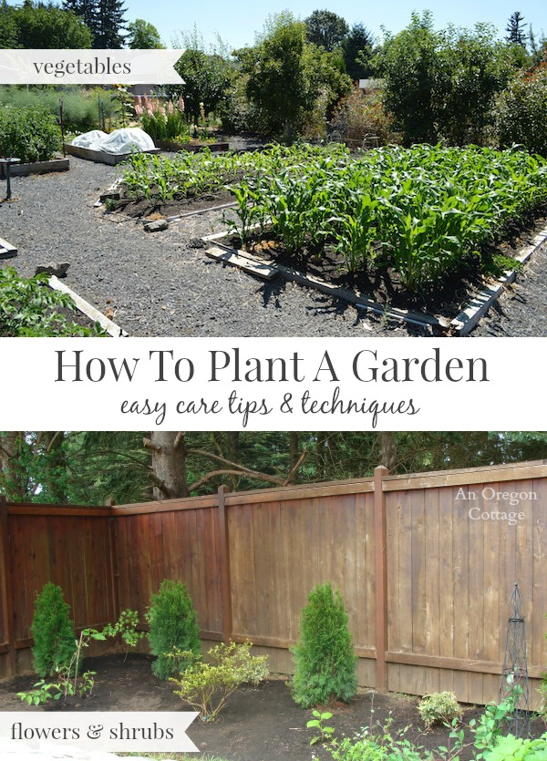 How to plant a garden-easy care tips and techniques for flowers and vegetables.