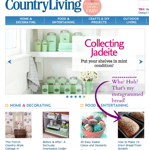 2-27-15 CountryLiving.com AOC Odd Feature
